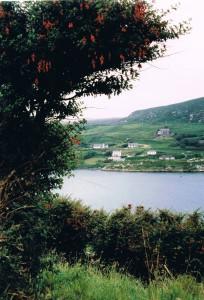 Ierland 2005-8